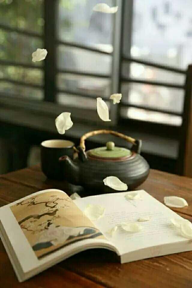 茶从来不说话,宁静至此升华