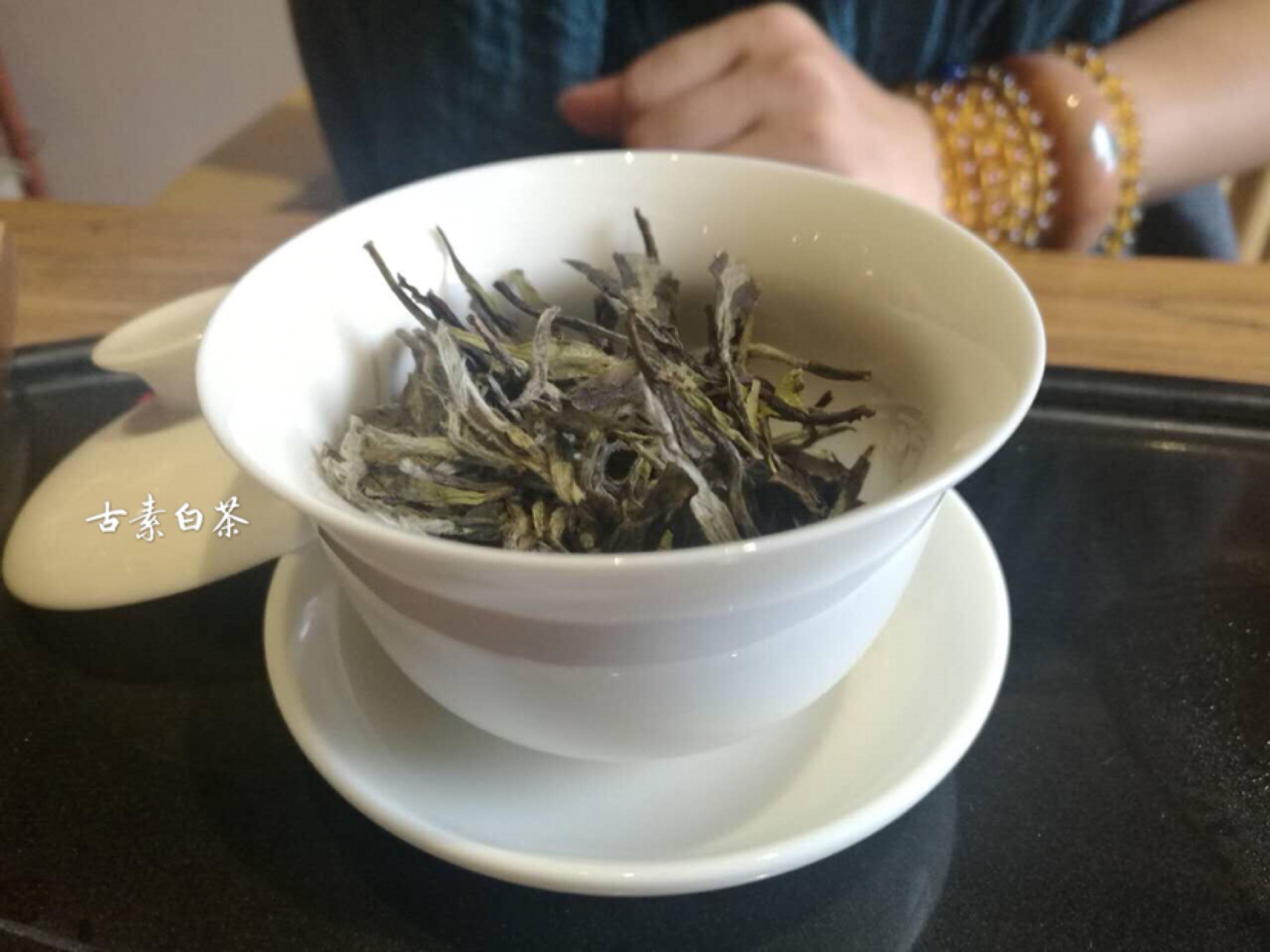 白茶多种泡法