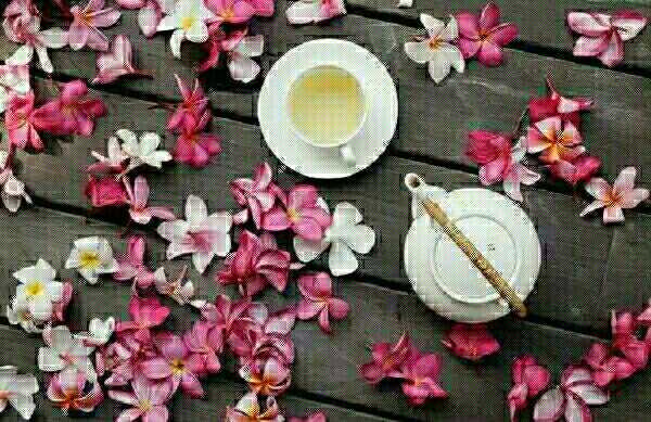 路不会白走,茶更不会白喝