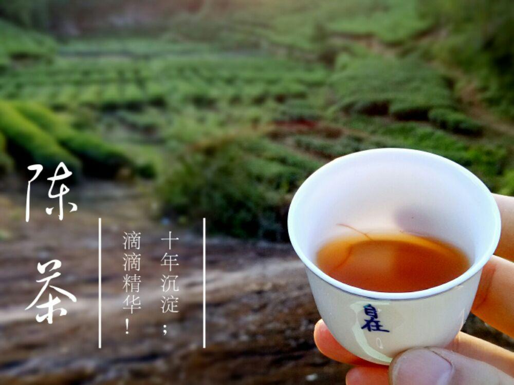 【晒茶记】陈年大红袍