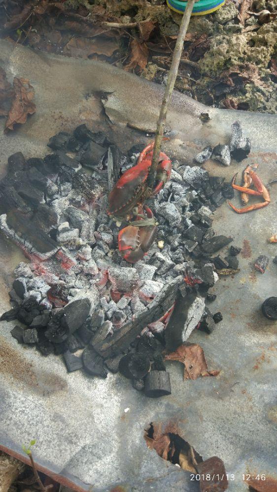 【65】海滩BBQ