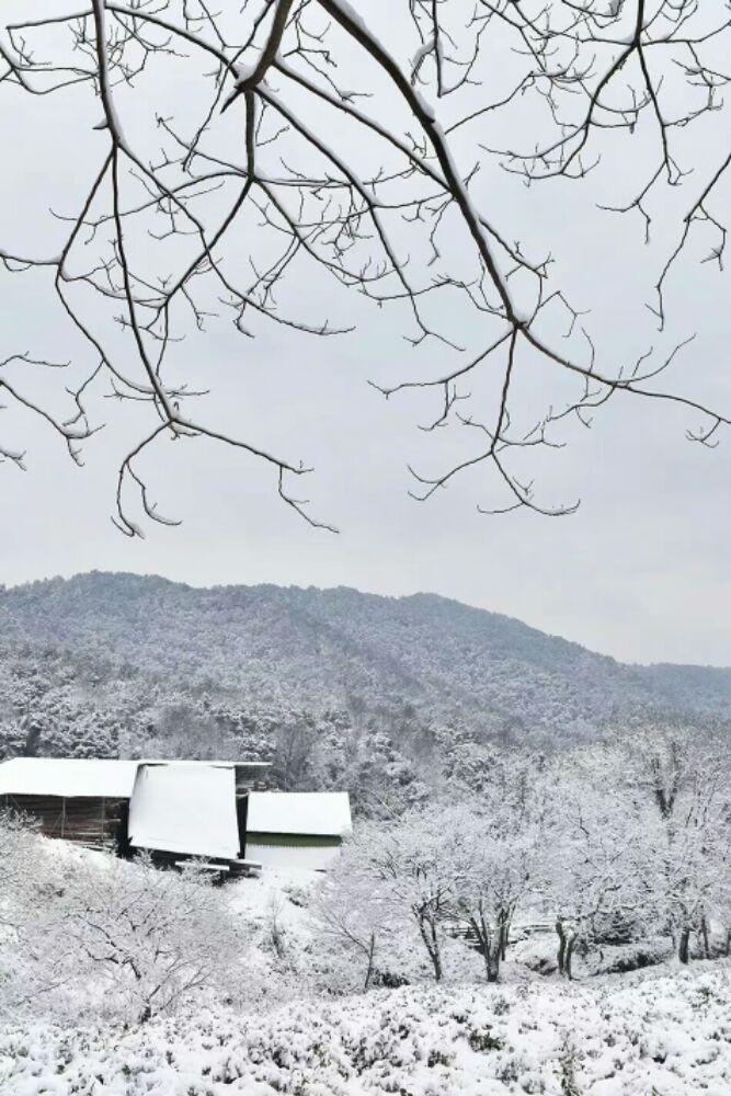 杭州翁家山的雪