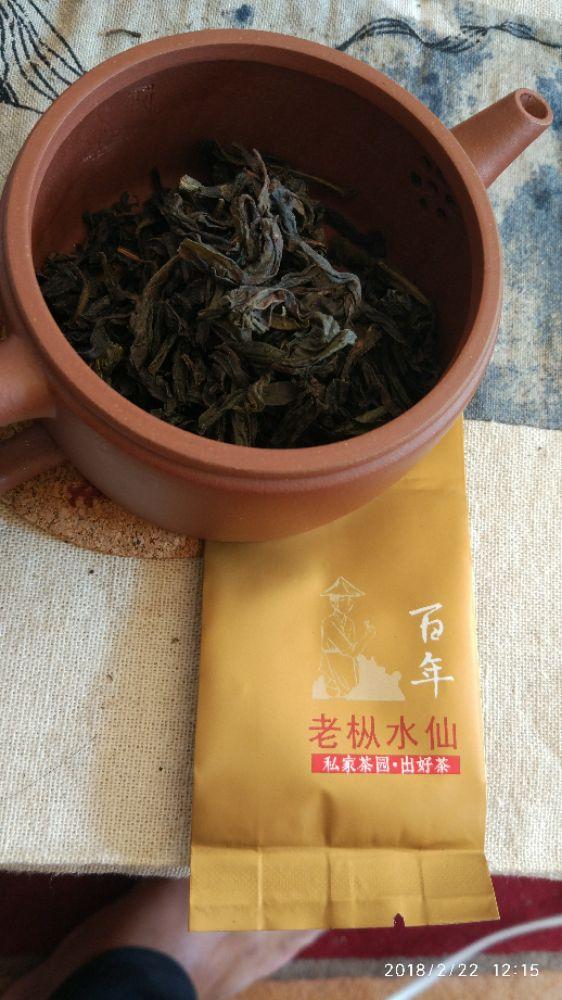 【我茶之我鉴】百年老枞水仙