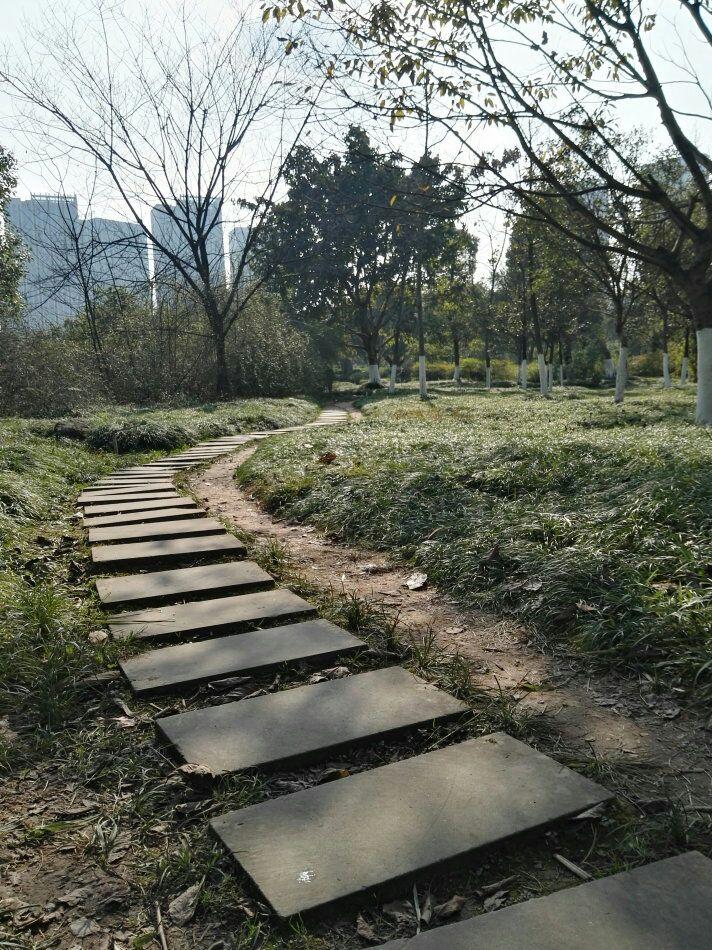 【竹里舍·雾山】    游春彩云湖