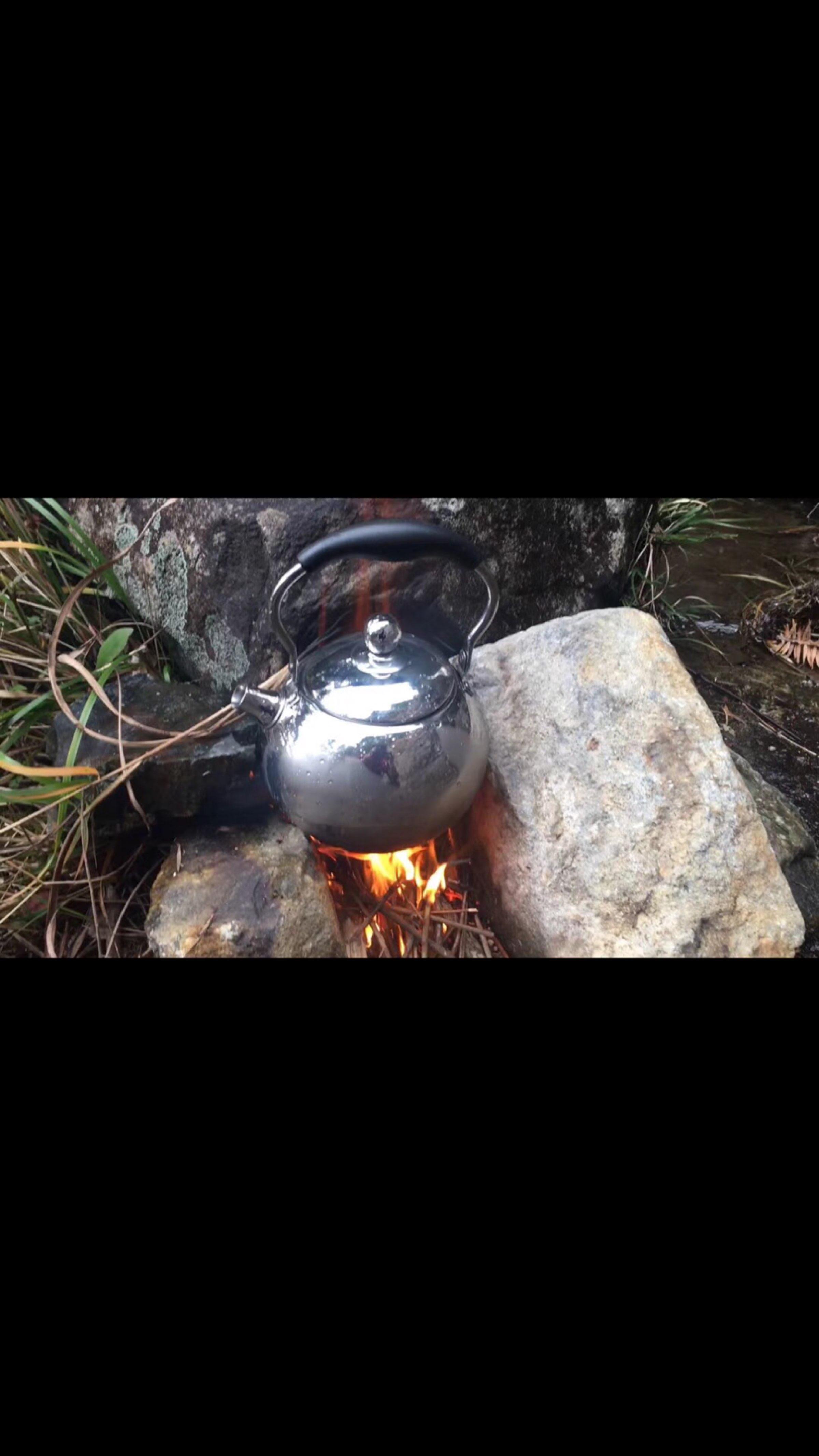 深山老林之中饮一壶清茶,忘却那世间浮华
