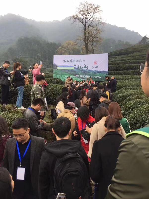 龙井茶产地已经给游客包围了