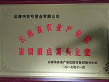中吉号茶业荣获云南农业产业化省级重点龙头企业