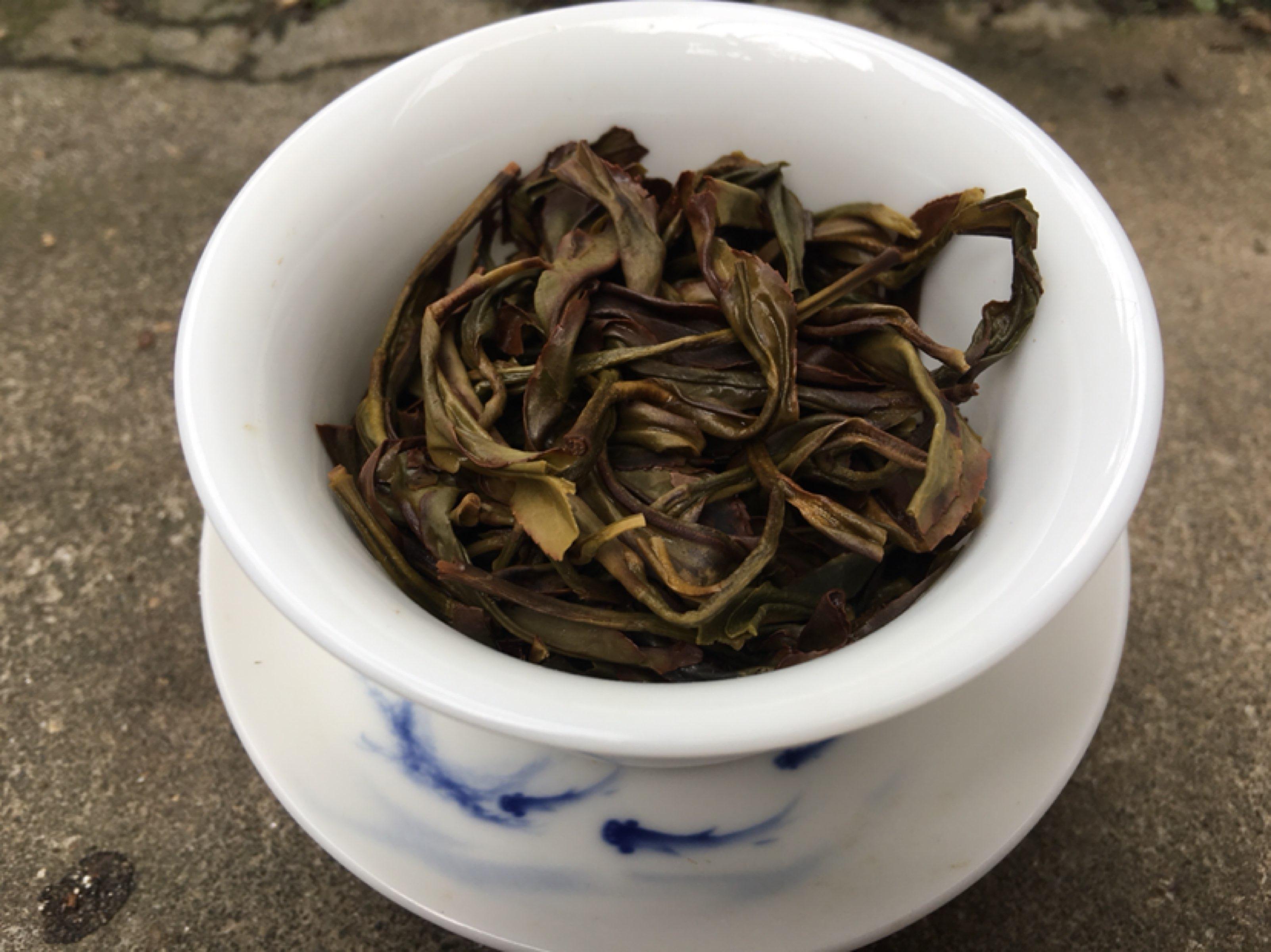 野生兰香~春茶如期而至~