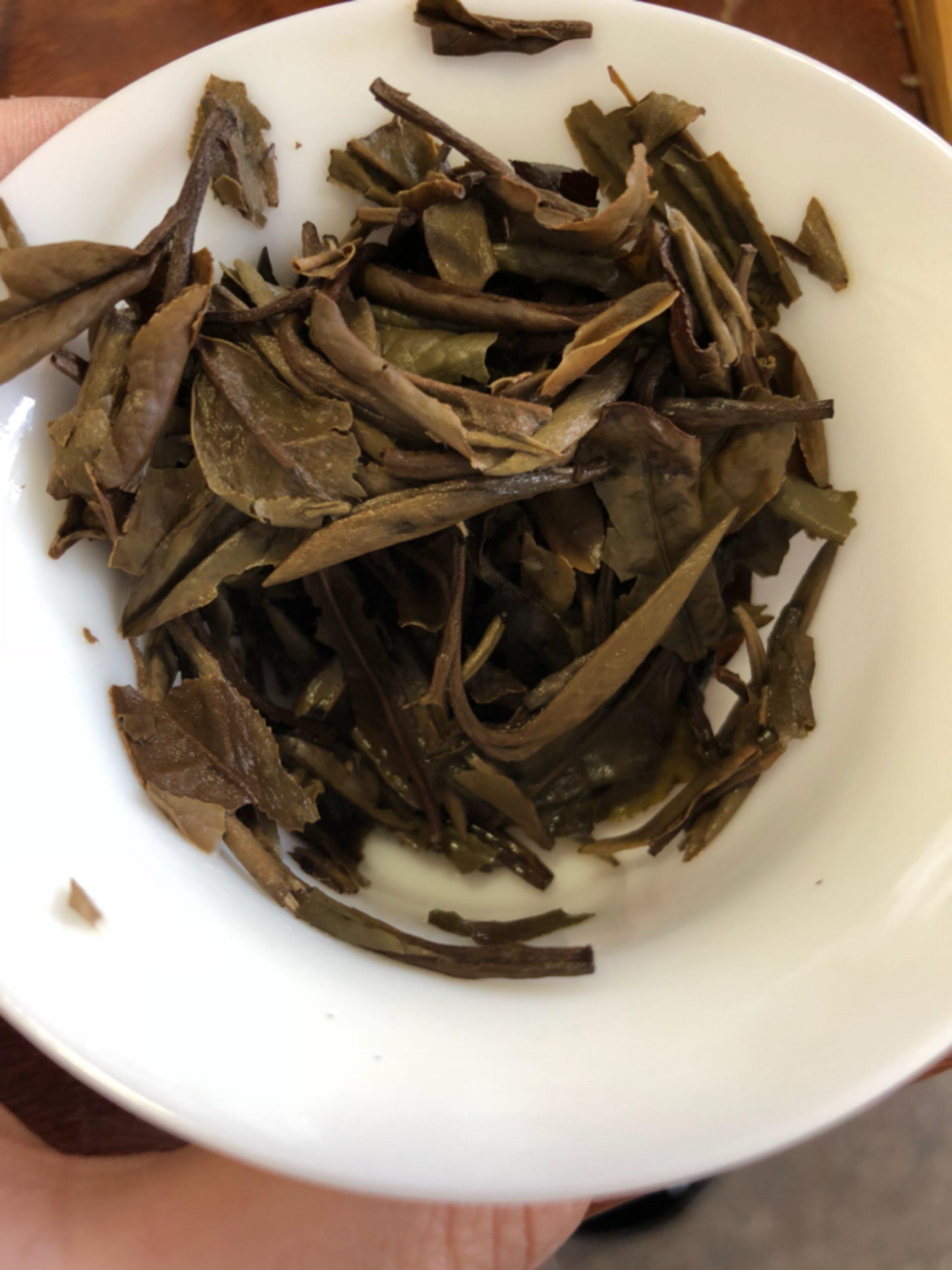 今天喝吴健老师的茶