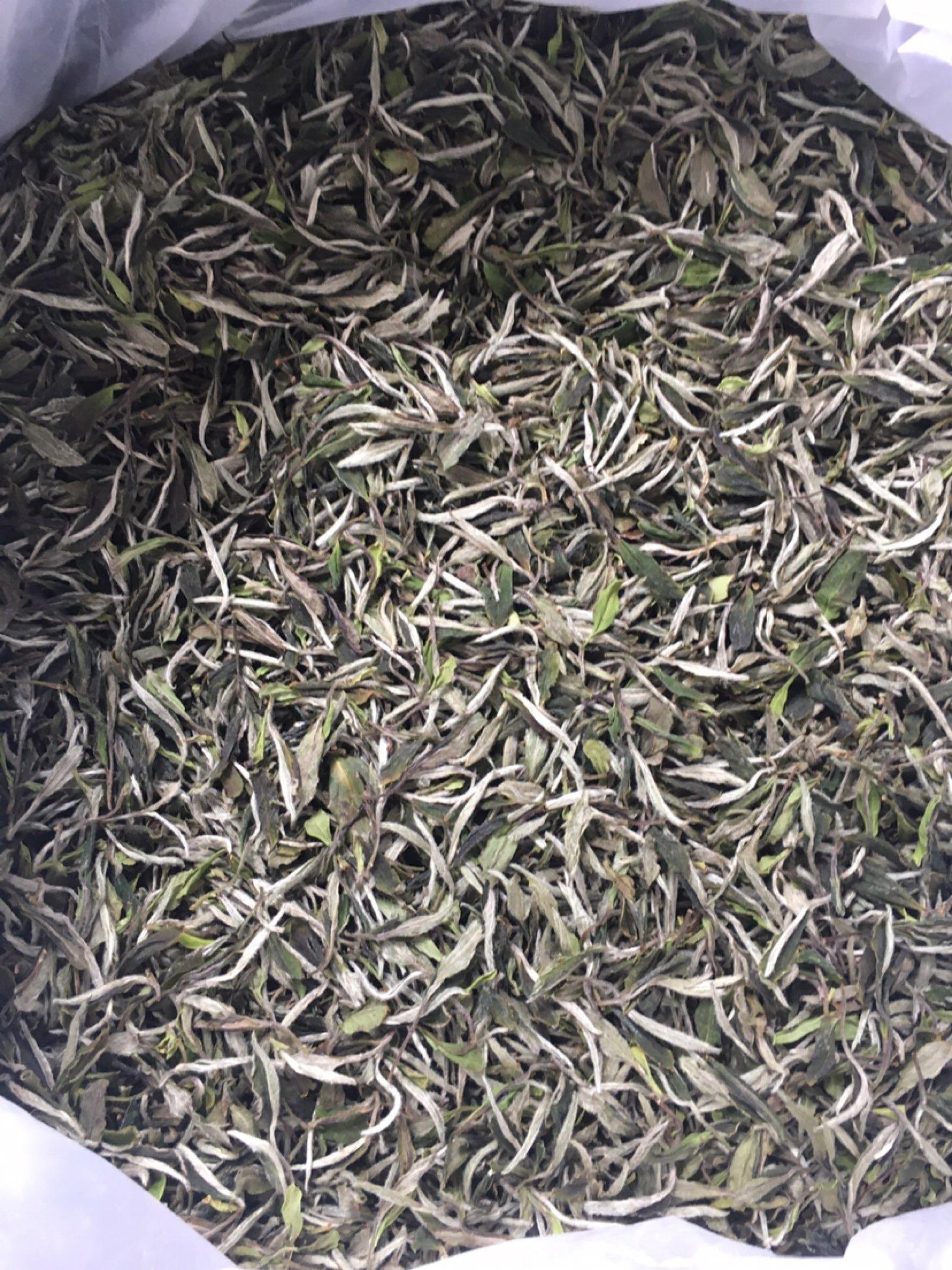 福鼎白茶荒野牡丹、牡丹系列