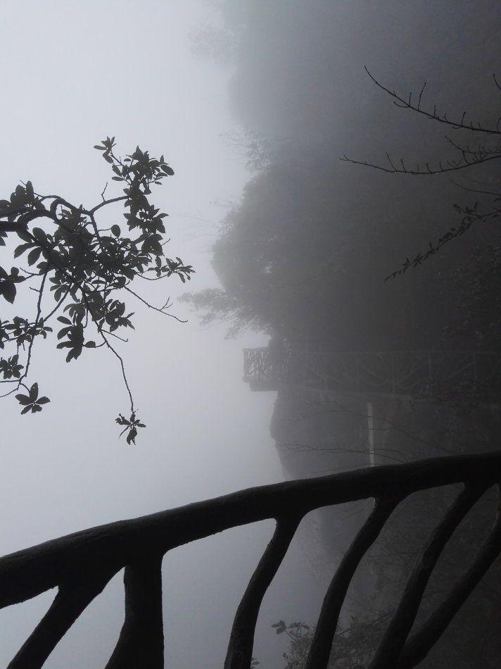 【竹里舍·雾山】    清明