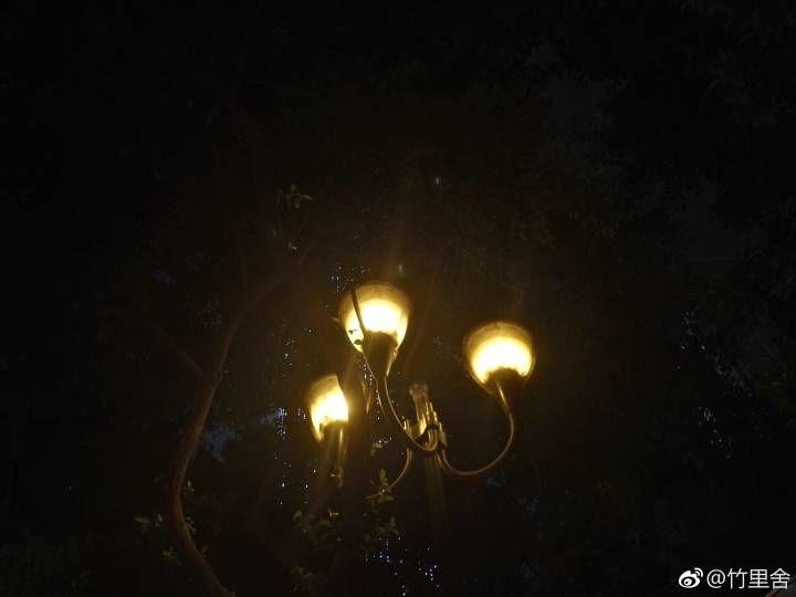 【竹里舍·雾山】    夜行