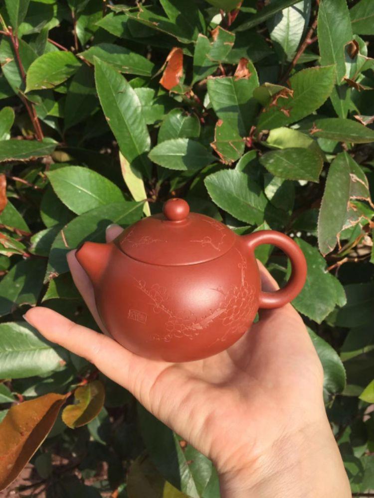 茶壶不分家,好茶配好壶