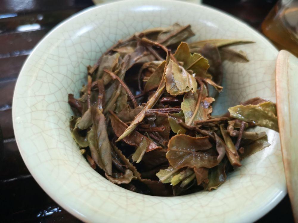 【我茶之我鉴】杏仁香白牡丹
