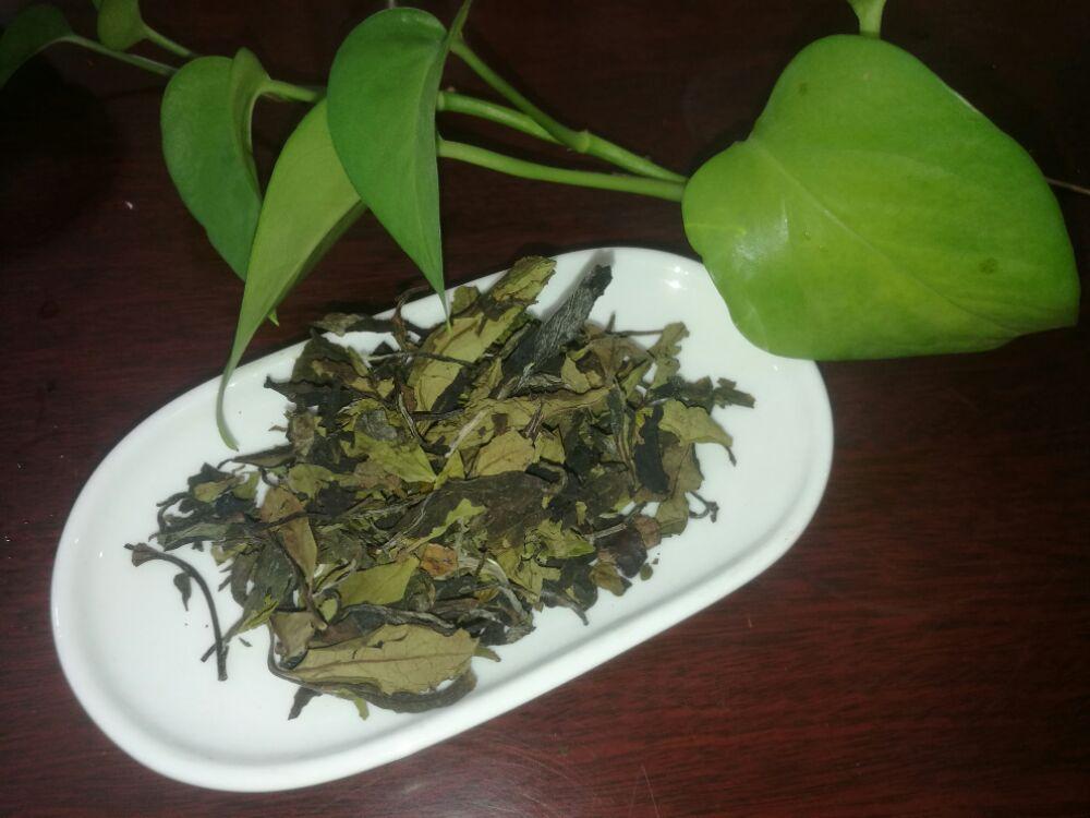 互助茶会第三期_山映有机白茶