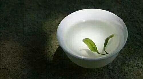 茶语悟人生