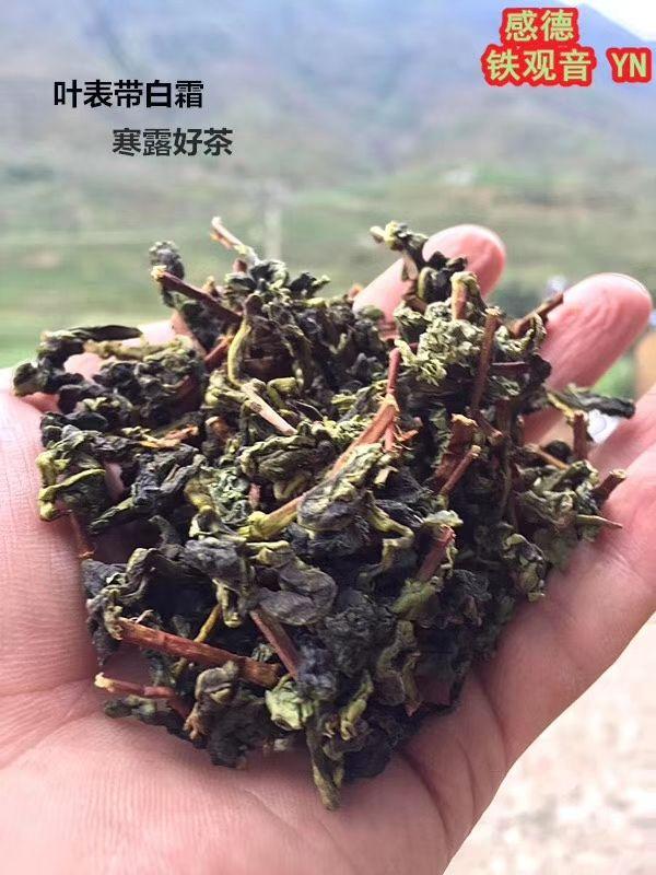 2018年,安溪铁观音新茶