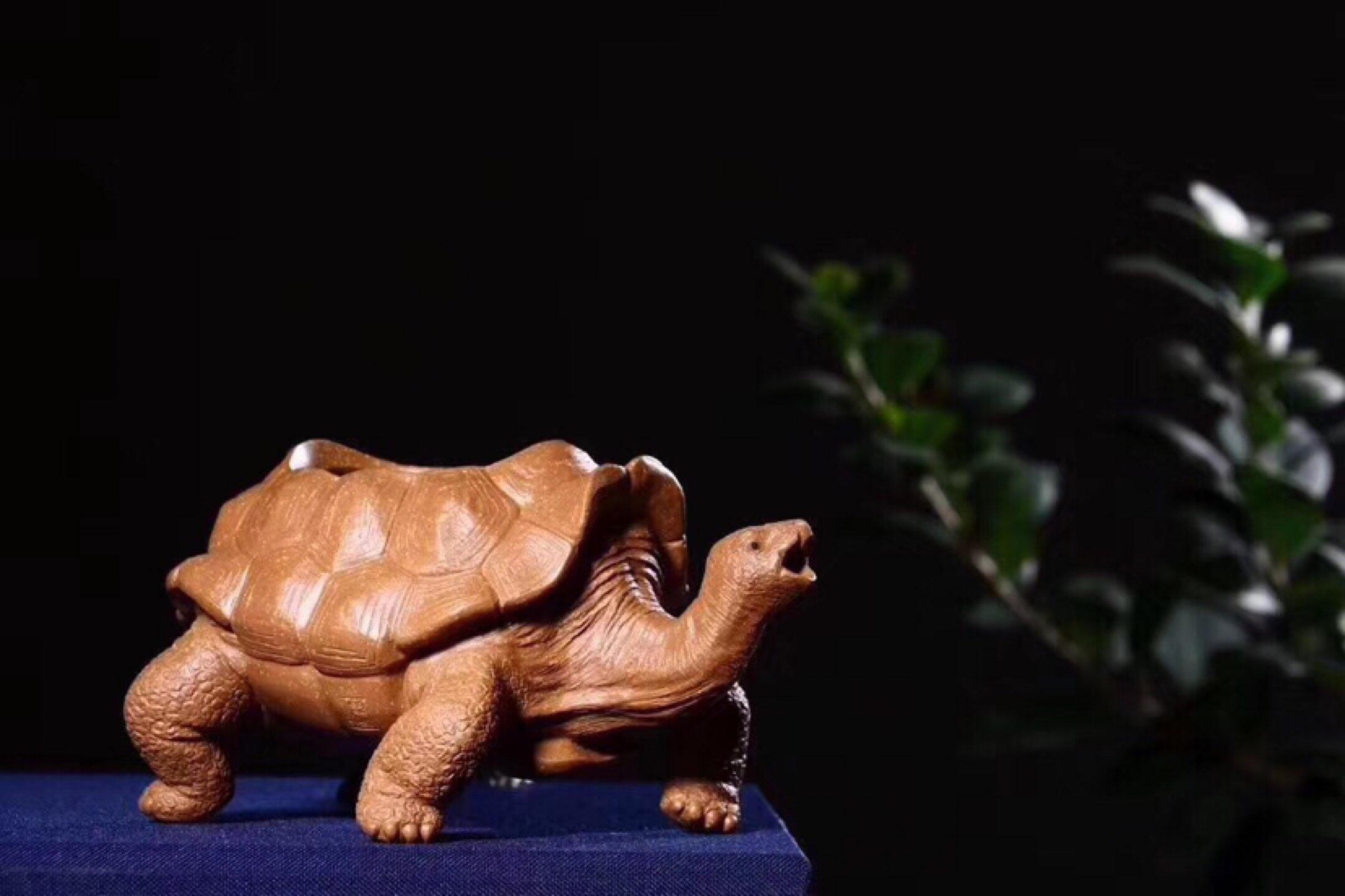 龙龟公道杯