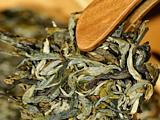 你每天喝几杯普洱茶?