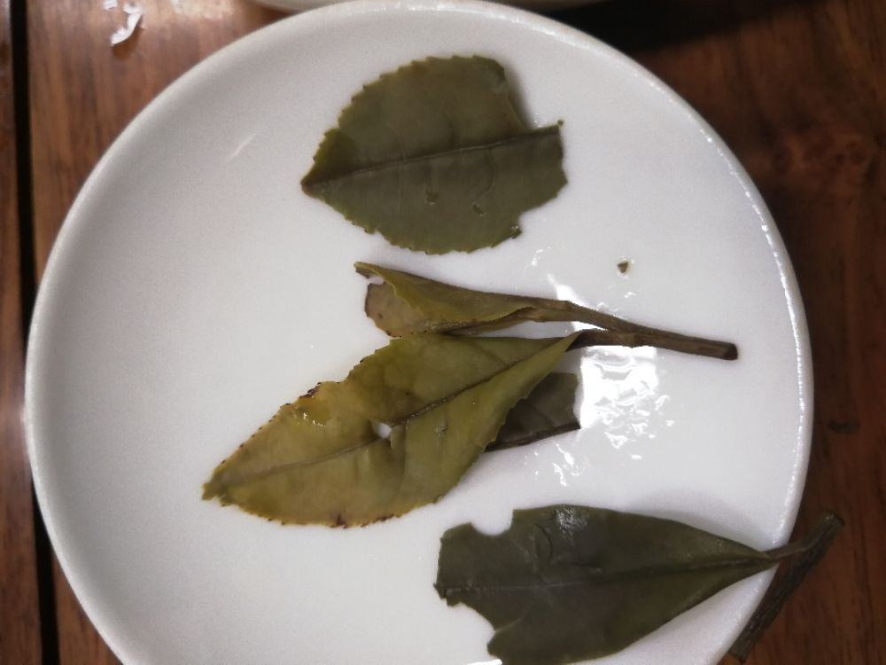 """""""豆浆""""白茶"""