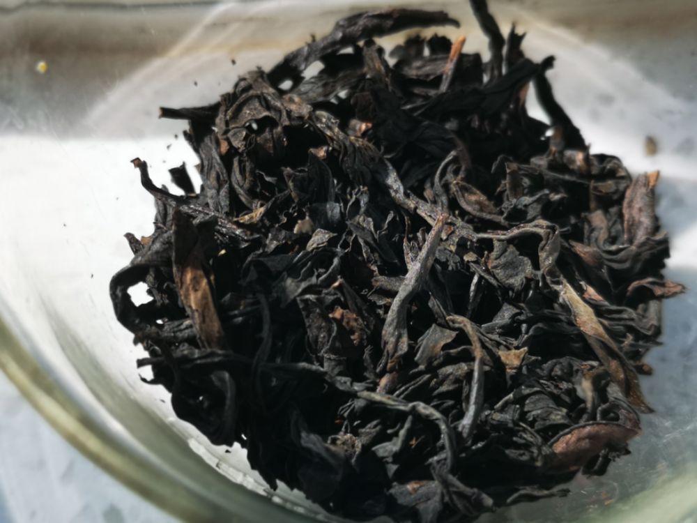 【我茶之我鉴】燕子巢