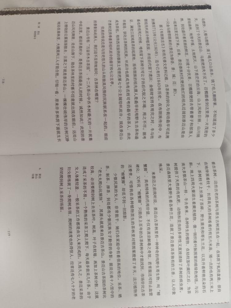 报告!这本书骗字数。
