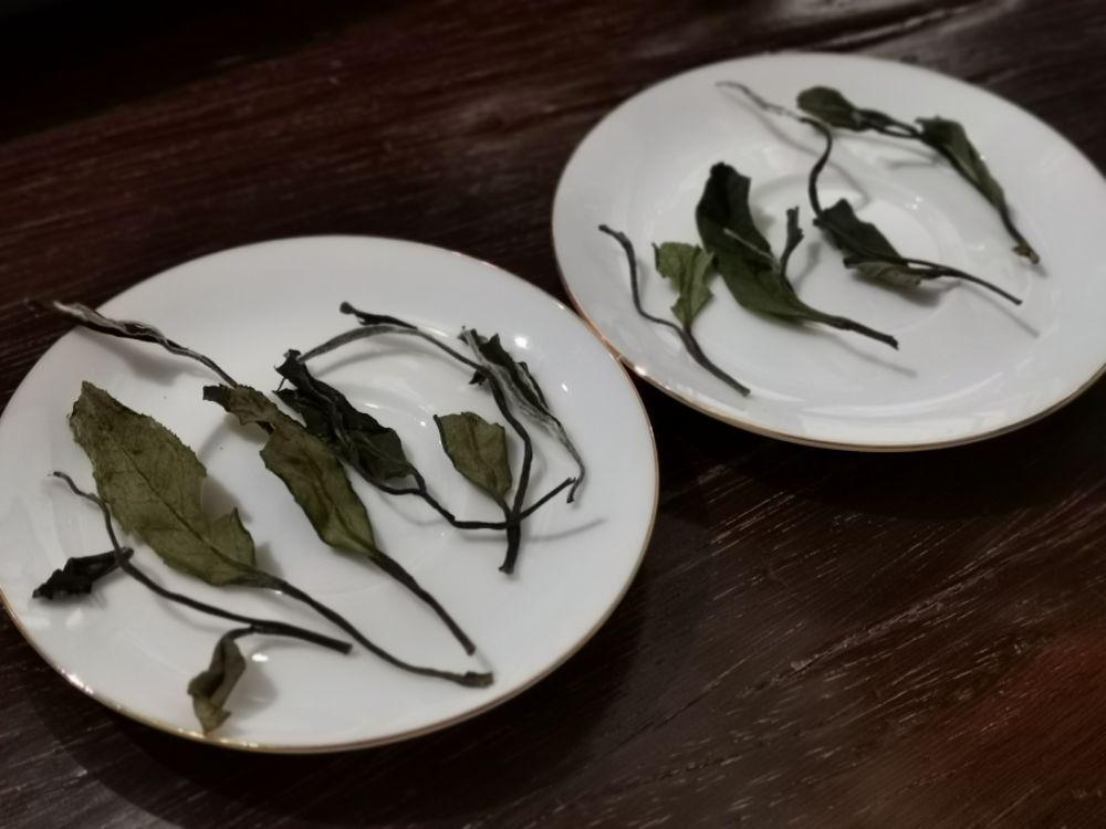#福鼎白茶  看图猜猜哪个传统日晒白茶