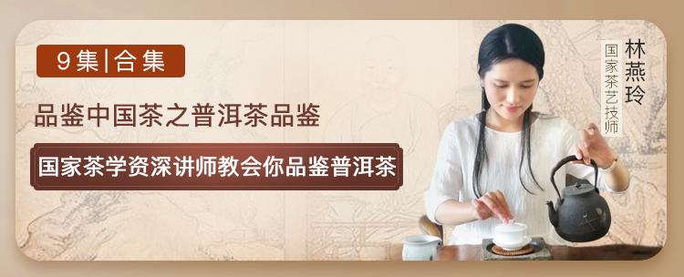 品鉴中国茶之普洱茶品鉴